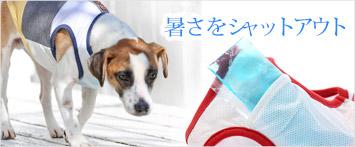 犬と生活パターンタンク