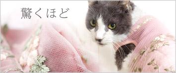 猫の暮しフフラワーチュールワンピースキャット
