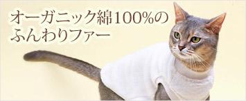 猫の暮らしオーガニックボア