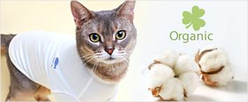 猫の暮らしプレーンオーガニックTキャット