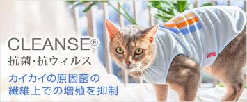 猫の暮らしクレンゼレインボータンクキャット