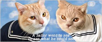 猫の暮らしセーラーTシャツキャット