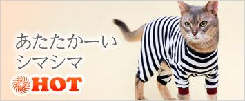 猫の暮らしウォームスーツキャット ト