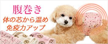 犬と生活腹巻き