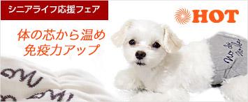 犬と生活腹巻きNo dog no life