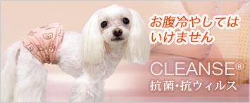 犬と生活腹巻きクレンゼ