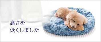 犬と生活ロウカドラー