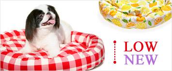 犬と生活ローカドラー