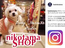 直営店instagram