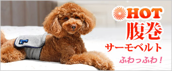 犬と生活腹巻サーモベルト