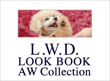 LOOK BOOK portfolio
