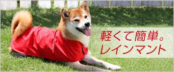 犬と生活レインコート