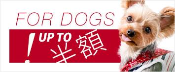 犬と生活服春夏セール