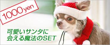犬と生活サンタハット&マフ