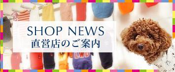 犬と生活直営店NEWS