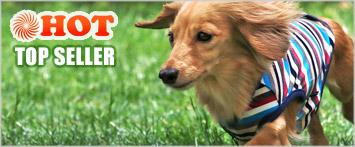 犬と生活ウォームマルチボーダータンク