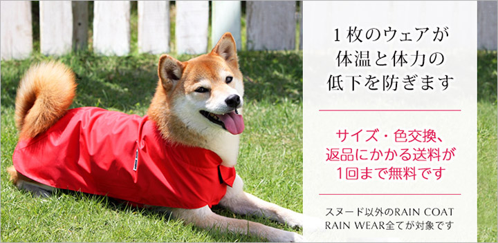 犬と生活秋rエインコート