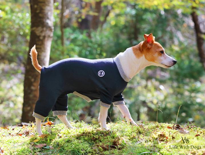 犬と生活 バグガードスーツ 【犬服,夏服,防虫対策,防虫ウェア】