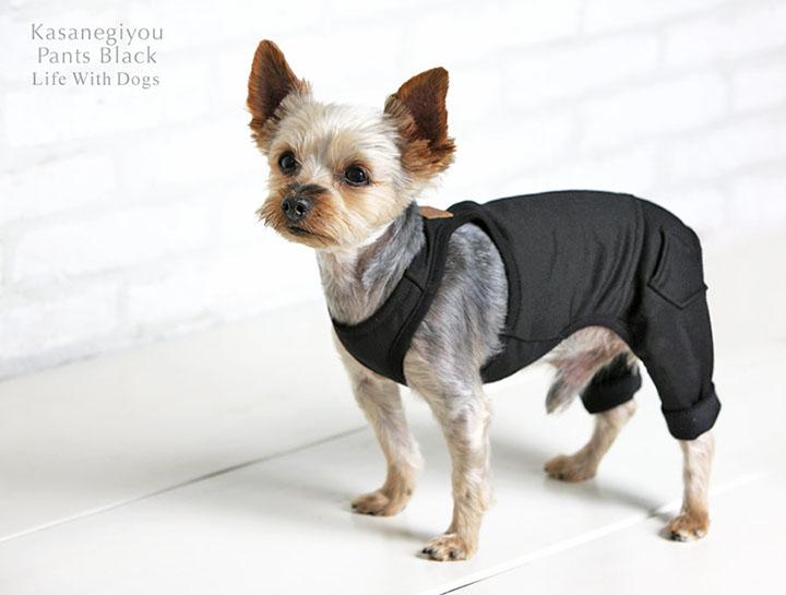 犬と生活 重ね着用パンツ ブラック