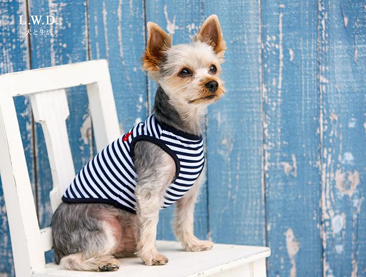 犬と生活 クールボーダーマリン 【犬服 夏服】