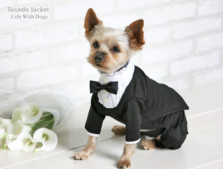 犬と生活 タキシード