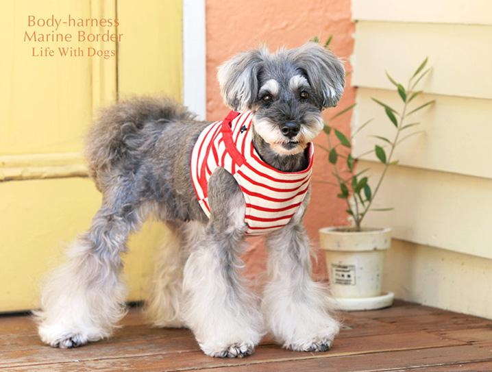 犬と生活 ボディハーネスマリンボーダ