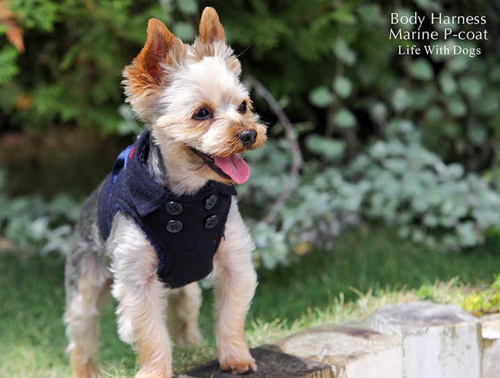 犬と生活 ボディハーネスマリンPコート