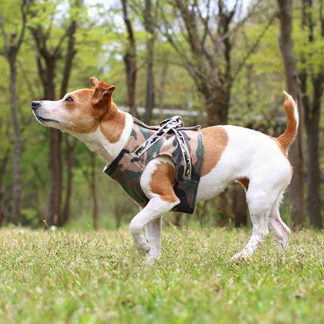犬と生活 ボディハーネスミリタリー