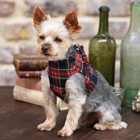 犬と生活 ボディハーネスタータンチェック