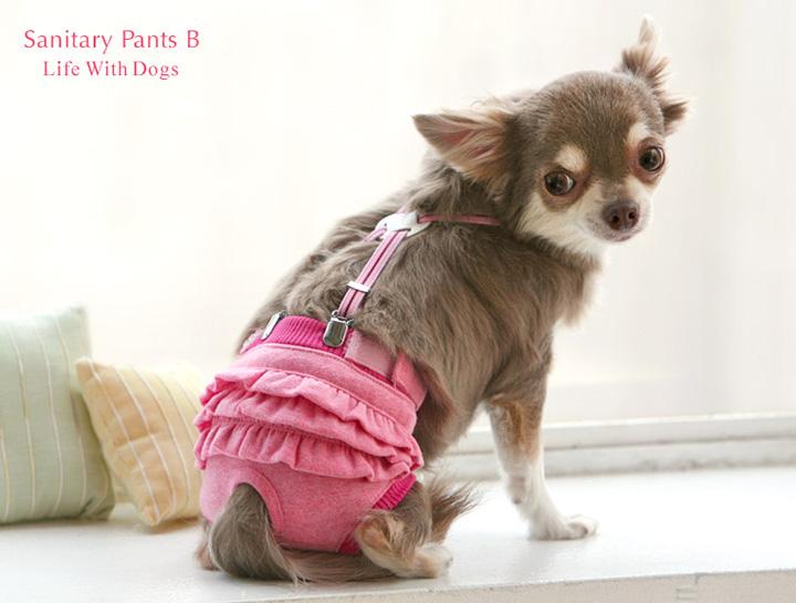 犬と生活 サニタリーパンツB