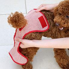 犬と生活 ストライプサニタリーパンツ