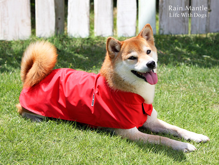 犬と生活 レインマント 柴犬 中型犬 レインコート
