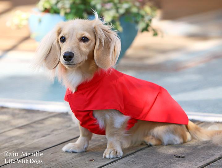 犬と生活 レインマント ダックス レインコート