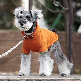 犬と生活 Rパーカー