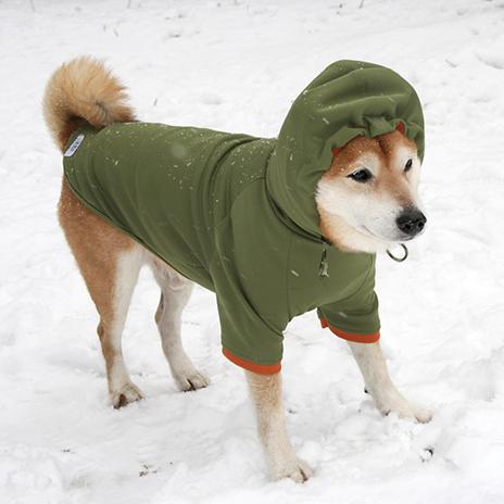 Rパーカー 柴犬のレインコートなら犬と生活