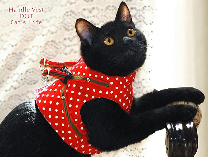 猫の暮らし ハンドルベスト ドット