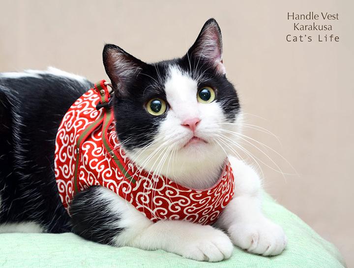 猫の暮らし ハンドルベスト 唐草