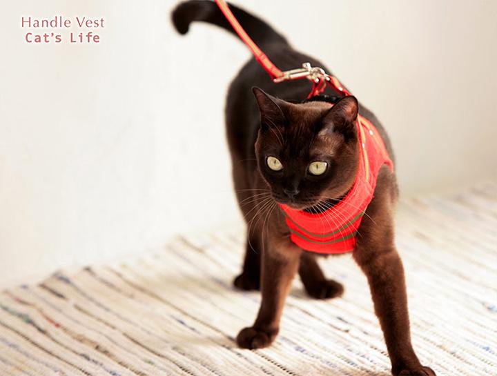 猫の暮らし ハンドルベスト