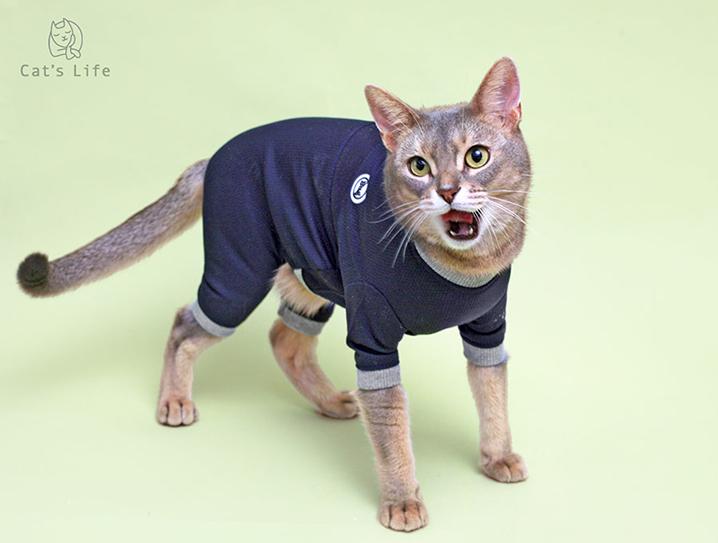 猫の暮らし バグガードスーツ キャット 【猫服,ウェア,つなぎ】