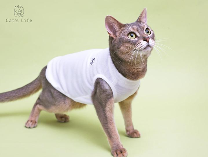 猫の暮らし バグガードタンク キャット 【猫服,ウェア】