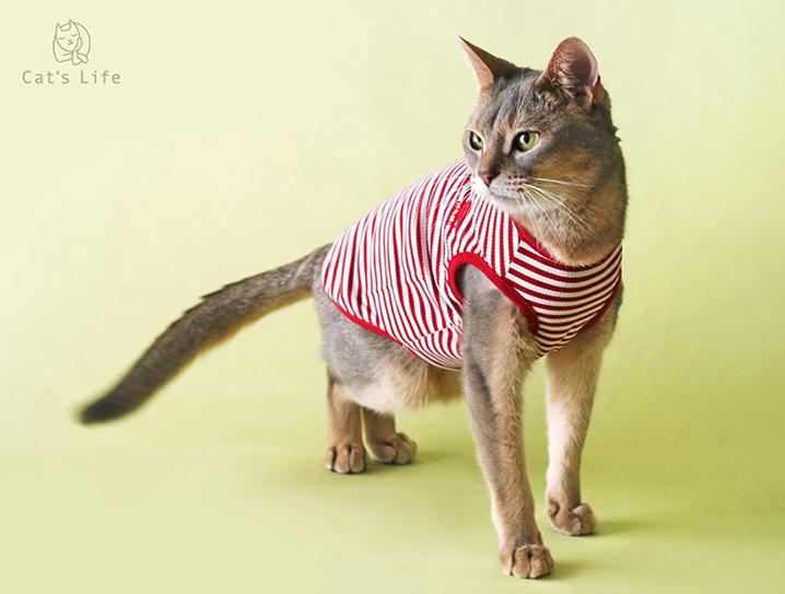 猫の暮らし クールボーダーマリン キャット 【猫服,ウェア】
