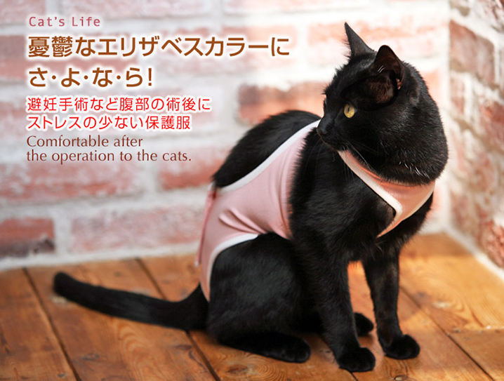 猫の暮らし 術後ガードスーツキャット