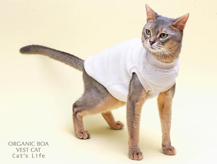 猫の暮らし オーガニックボアベスト キャット
