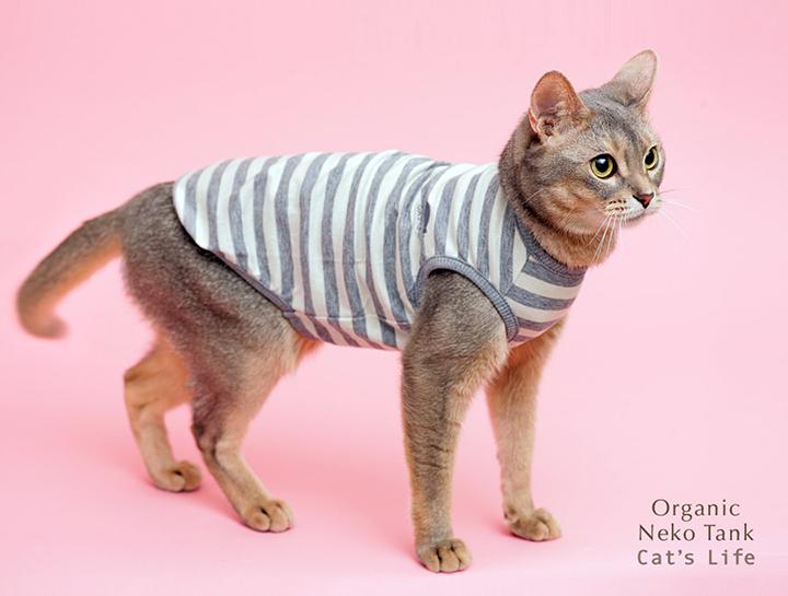 猫の暮らし オーガニックネコタンク 猫服