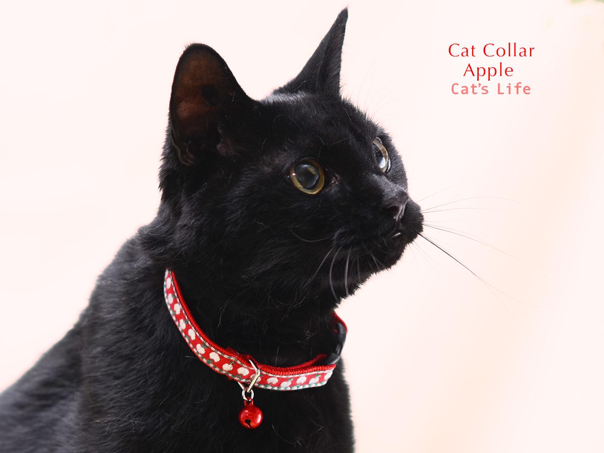 猫の暮らし キャットカラー アップル 首輪