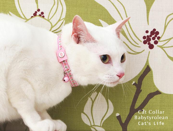 猫の暮らし キャットカラー ベビーチロリアン 首輪