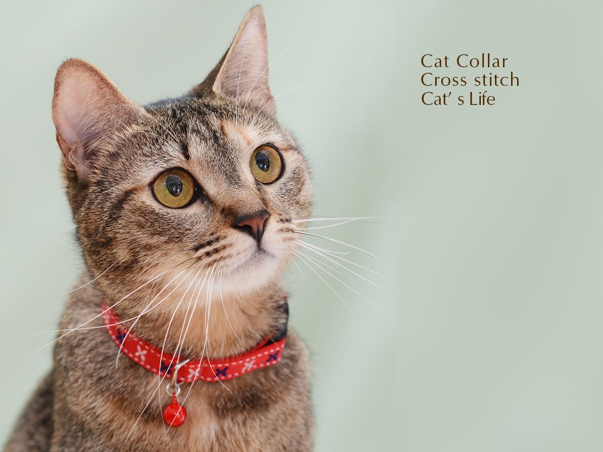 猫の暮らし キャットカラー クロスステッチ 首輪