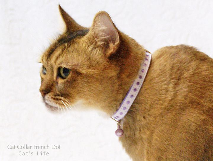 猫の暮らし キャットカラー フレンチドット 首輪