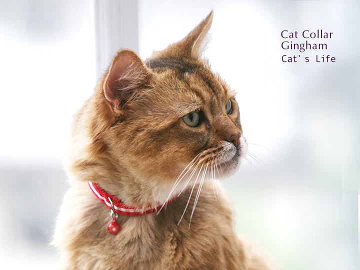 猫の暮らし キャットカラー ギンガム 首輪