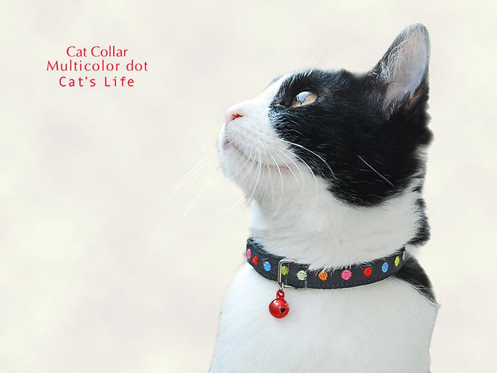猫の暮らし キャットカラー マルチカラードット 首輪